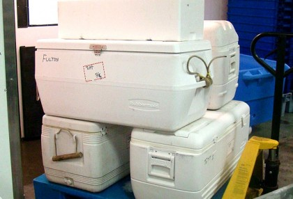 Bring your coolers and we will deliver your fish packed, iced and ready to load into your vehicle.